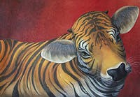Chris-R Artiste Peintre Animalier